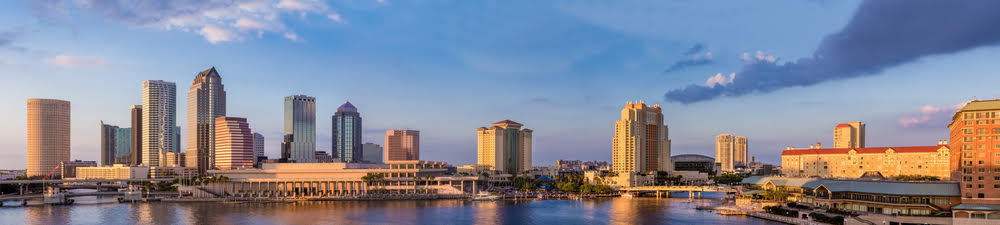 Tampa Bay picture